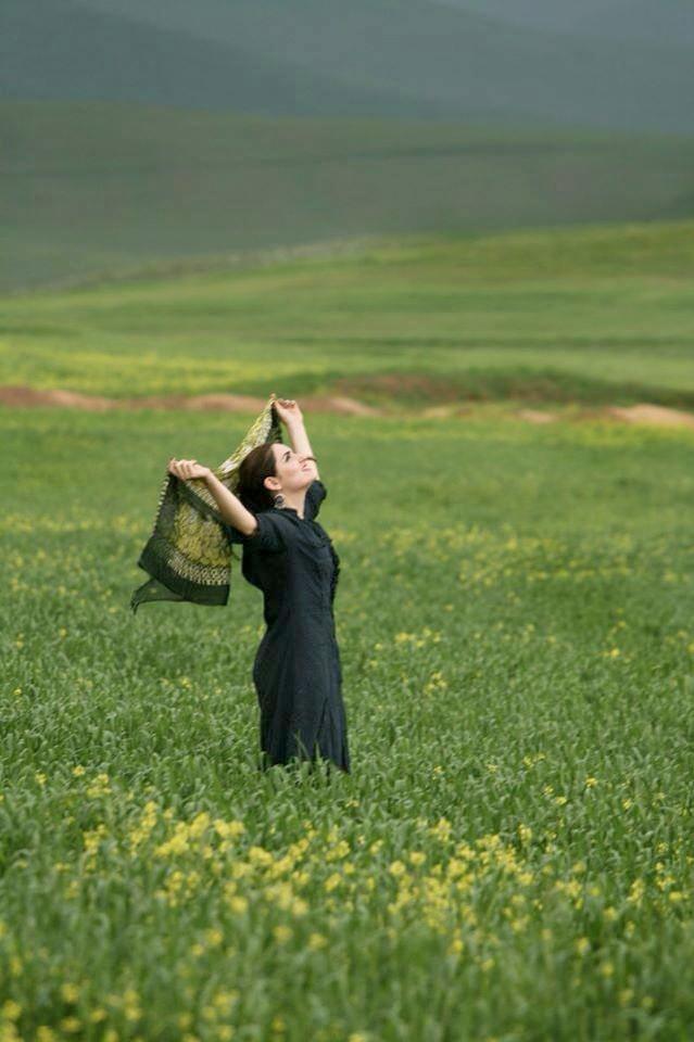 iran-green-fields